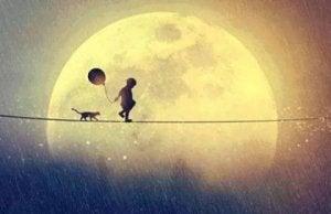 Poika ja kissa kävelevät narulla