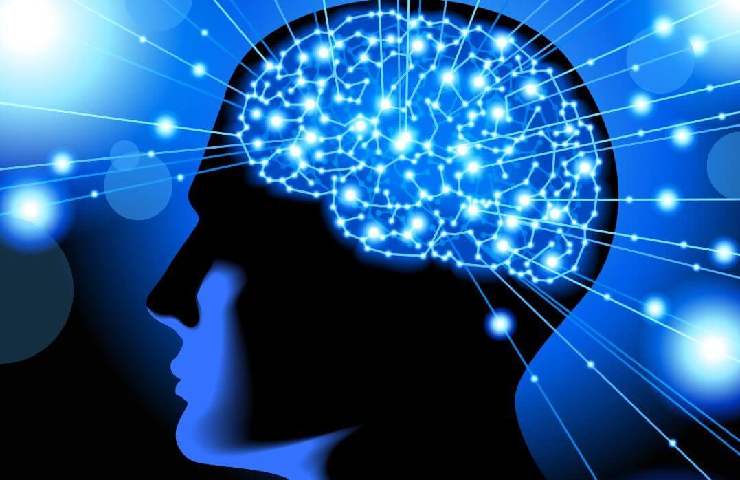 Tämä video muuttaa ymmärryksesi aivotoiminnasta