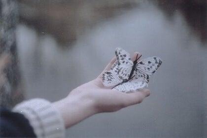Perhoset kädellä