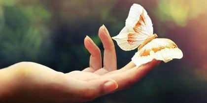 Perhonen naisen kädellä