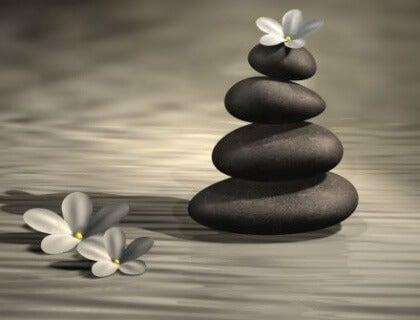 Kivet ja kukat