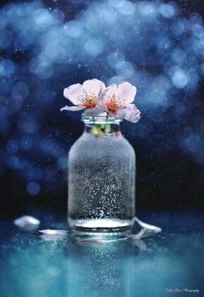 Kukat lasipullossa
