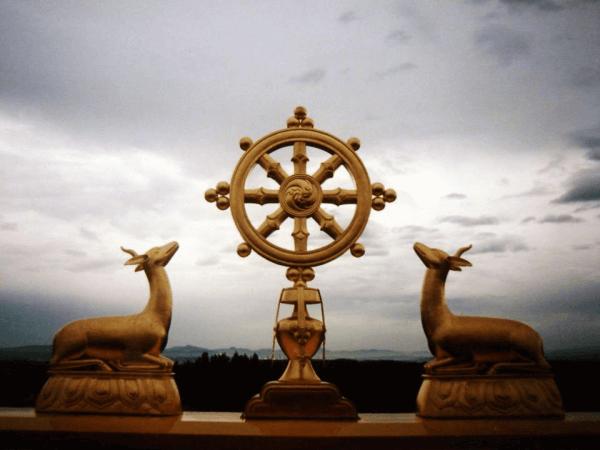 Dharman pyörä