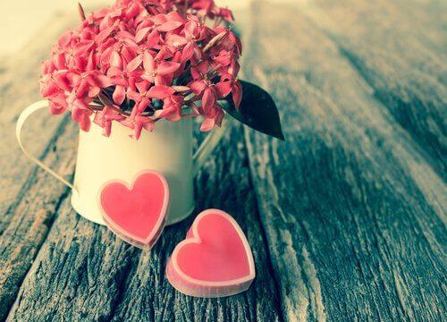Kuinka löytää elämäsi rakkaus