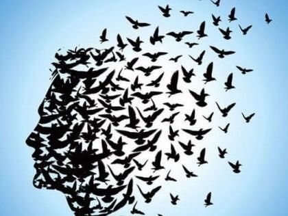Linnuista muodostuu henkilön pää