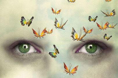 Perhoset kasvoilla