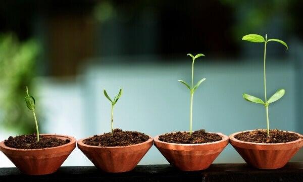 8 merkkiä henkisestä kasvusta