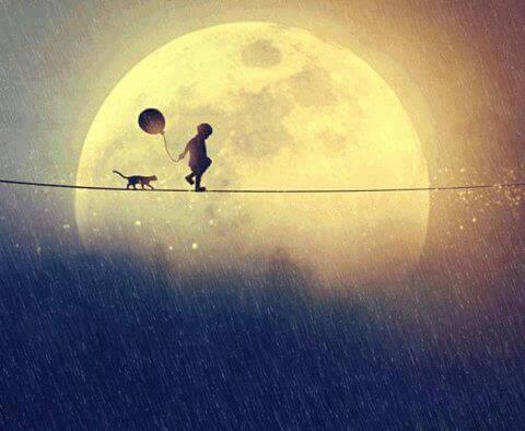 Poika ja kissa kävelevät nuoralla kuun valossa