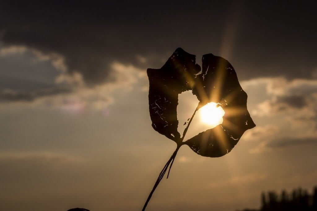 Mahdoton rakkaus: kolme haavaa, jotka eivät koskaan parane