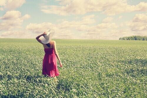 Kesäpäivä niityllä