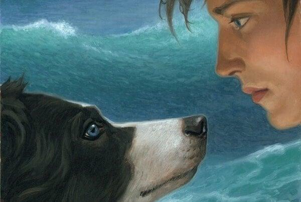 Koira ja poika