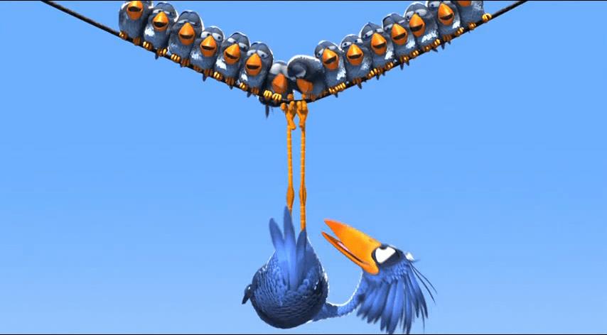 Erilaisuus linnut