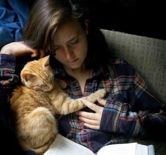 Kissa ja tyttö