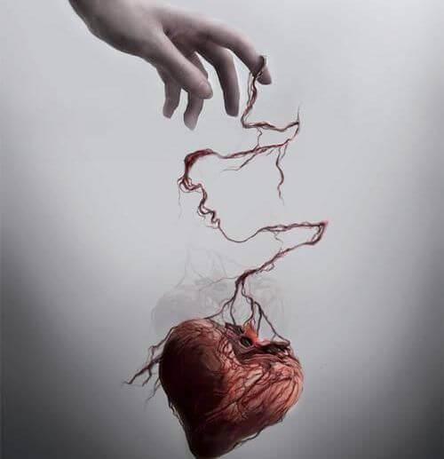kasi-sydan
