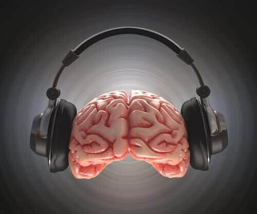 Aivot kuuntelevat musiikkia kuulokkeilla