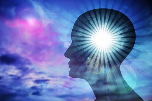 Aivot ja vaistot
