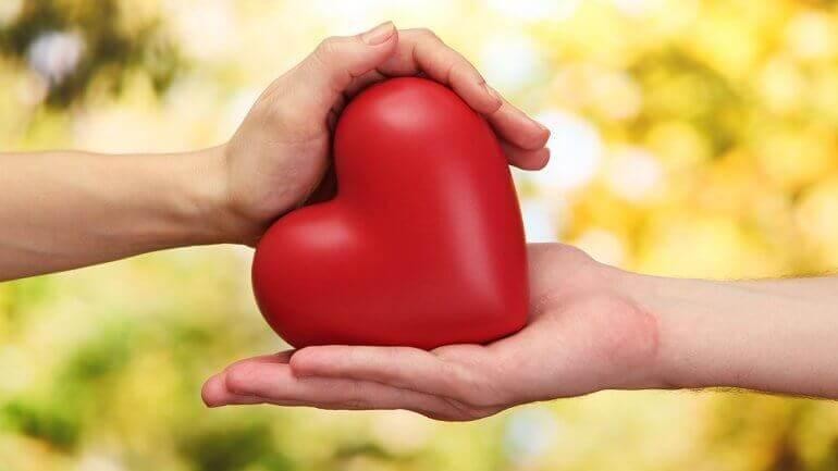 kädet pitelevät sydäntä