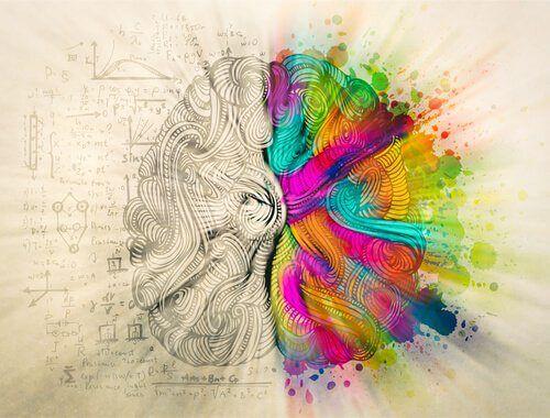 luova oikea aivopuolisko