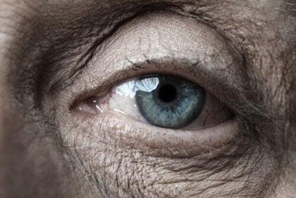Vanha silmä