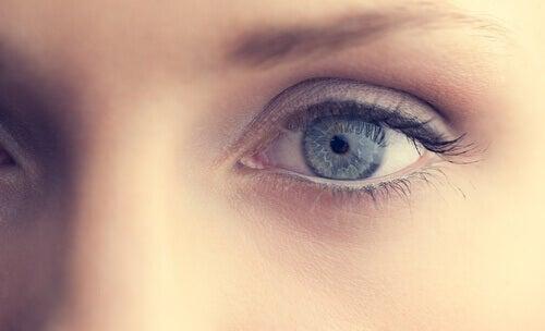 Silmä ja katse