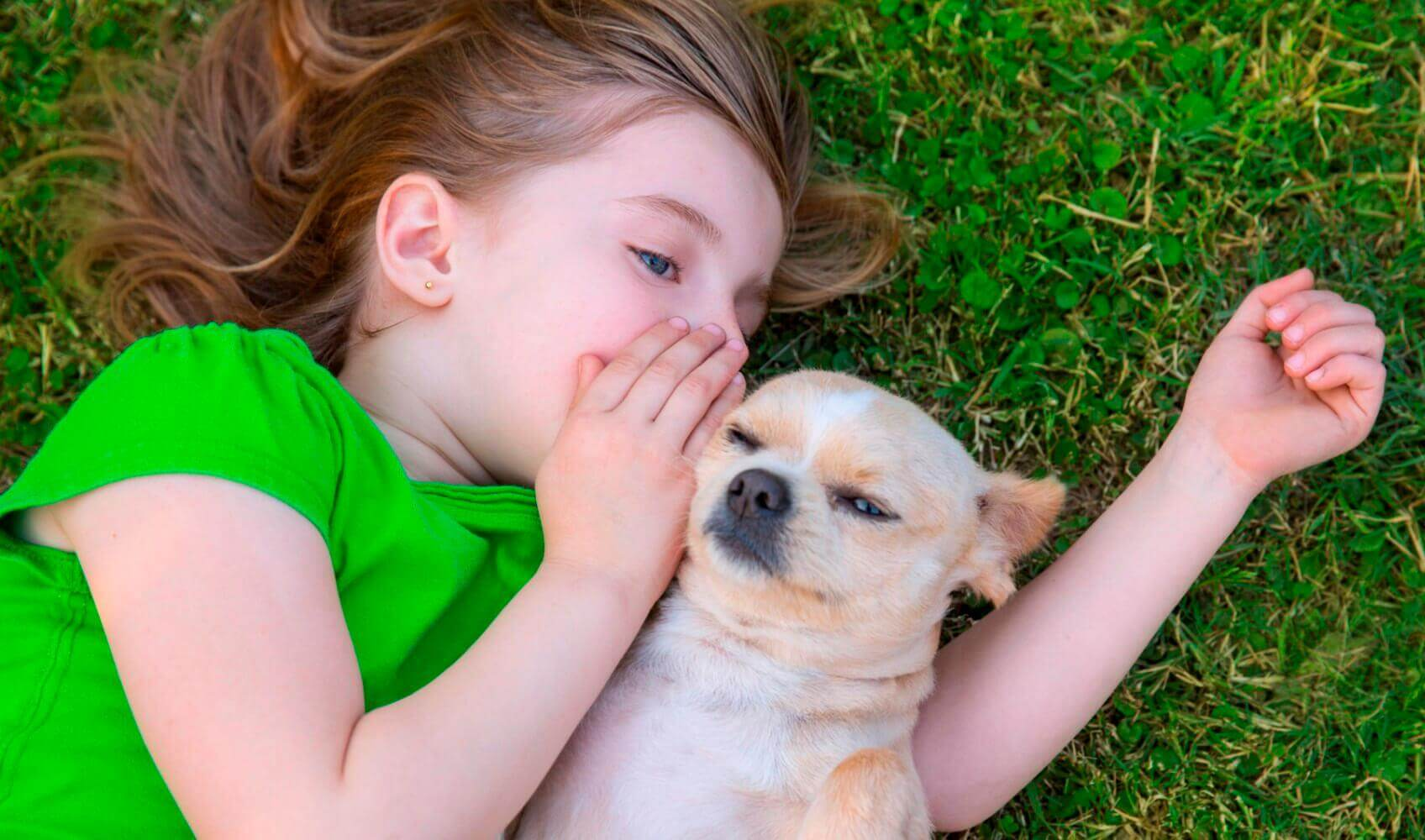 tyttö kuiskaa koiralle