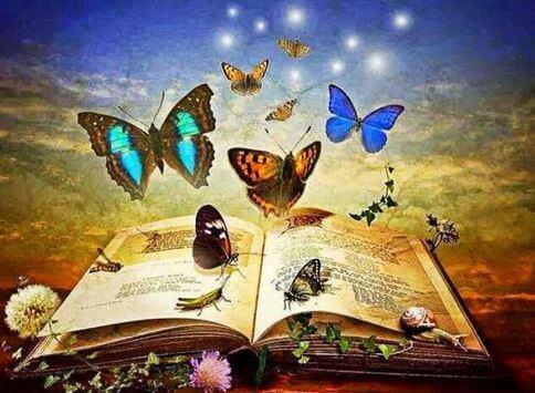 Kirja ja perhoset