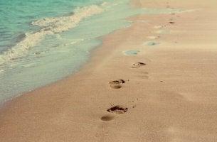 Askeleet rannalla loppu