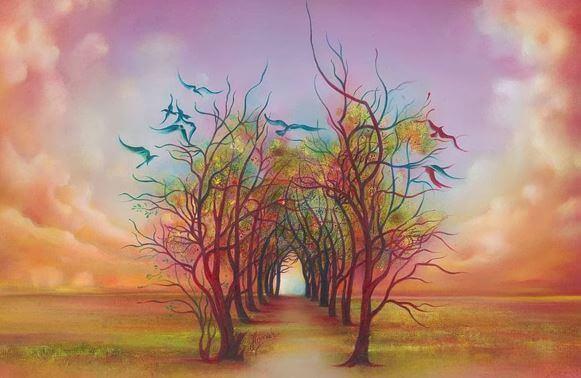 sateenkaari-puut