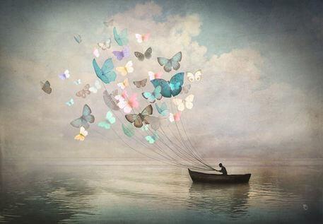 Vene ja perhoset
