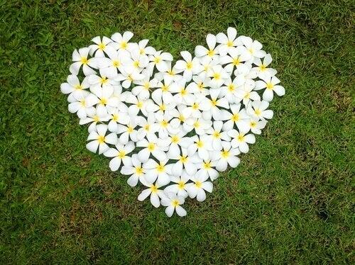 Kukista muodostettu sydän