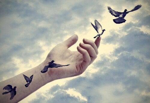 Päästä irti linnut