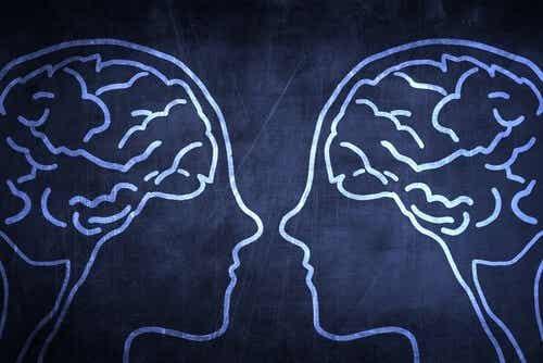 Peilisolut ja empatia
