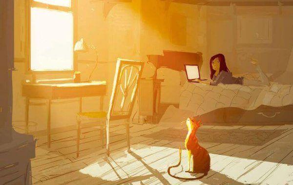 kissa-auringossa