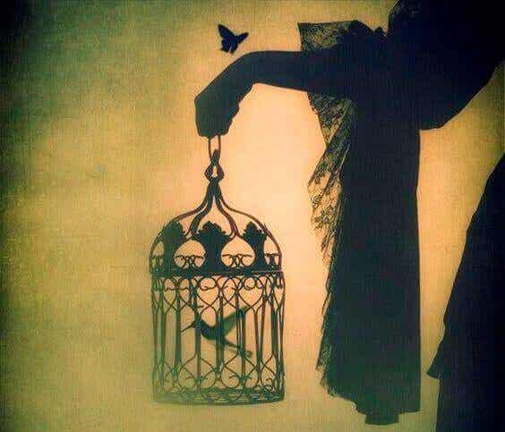 Häkissä syntynyt lintu ajattelee, että lentäminen on sairaus
