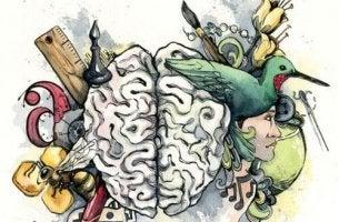 Aivot ja älykkyys