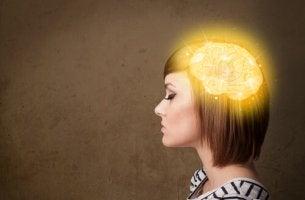 Aivot ja asenne