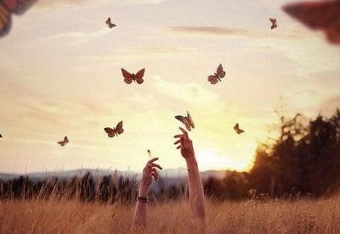Kädet ja perhoset