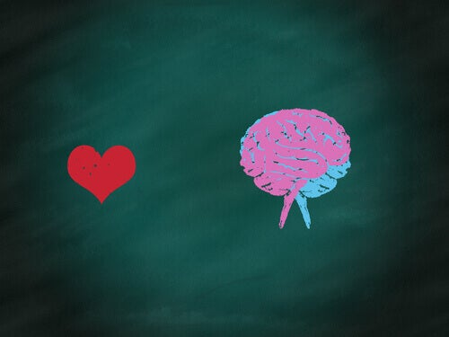 Sydän ja aivot