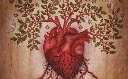 Sydän ja tunteiden ymmärtäminen