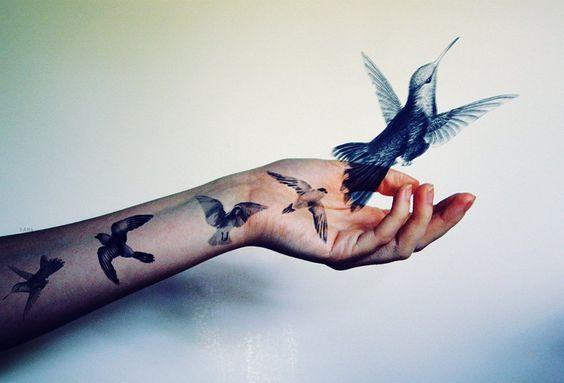 lintu lentää vapaaksi