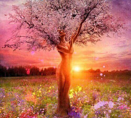 nainen on puu
