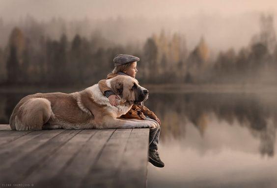poika ja koira