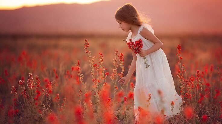 tyttö kerää kukkia