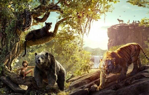 5 opetusta Viidakkokirjasta