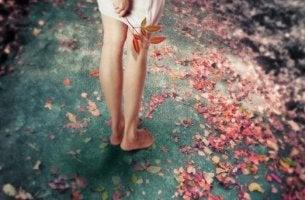 jalat ja ruusun terälehdet