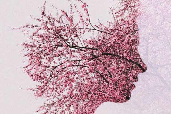 Mitä aivoilleni tapahtuu kun minulla on Alzheimerin tauti?