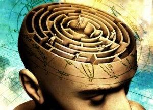 mieli on labyrintti