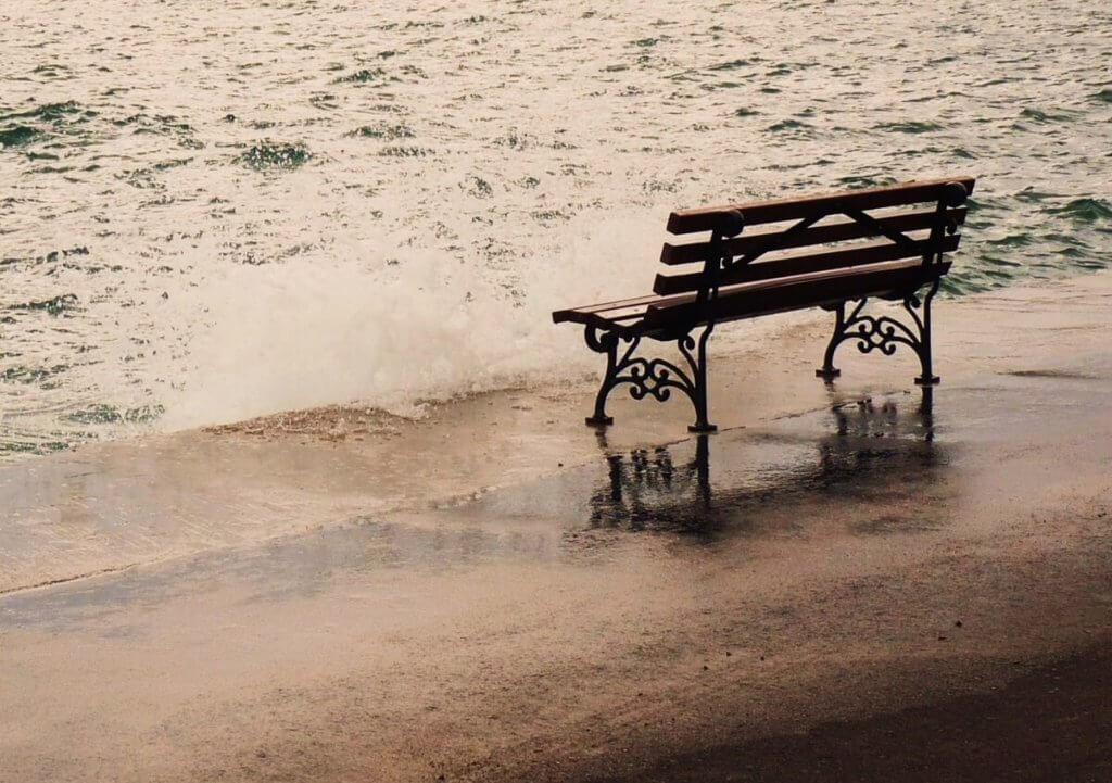 penkki meren rannalla