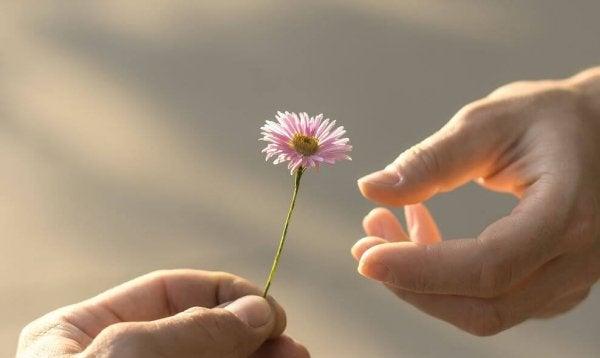 5 kypsyyden merkkiä, jotka rakkaus vaatii