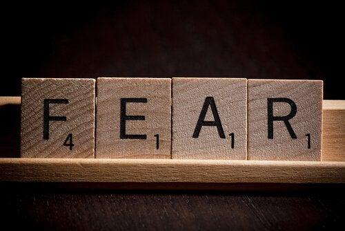fear pelko